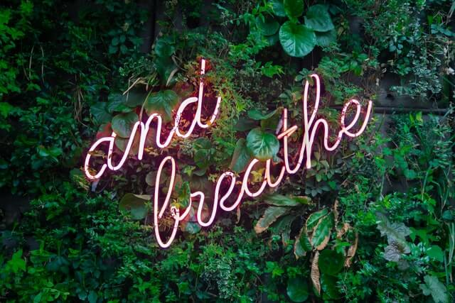 A neon sign in cursive 'And breathe' font with green leafy background